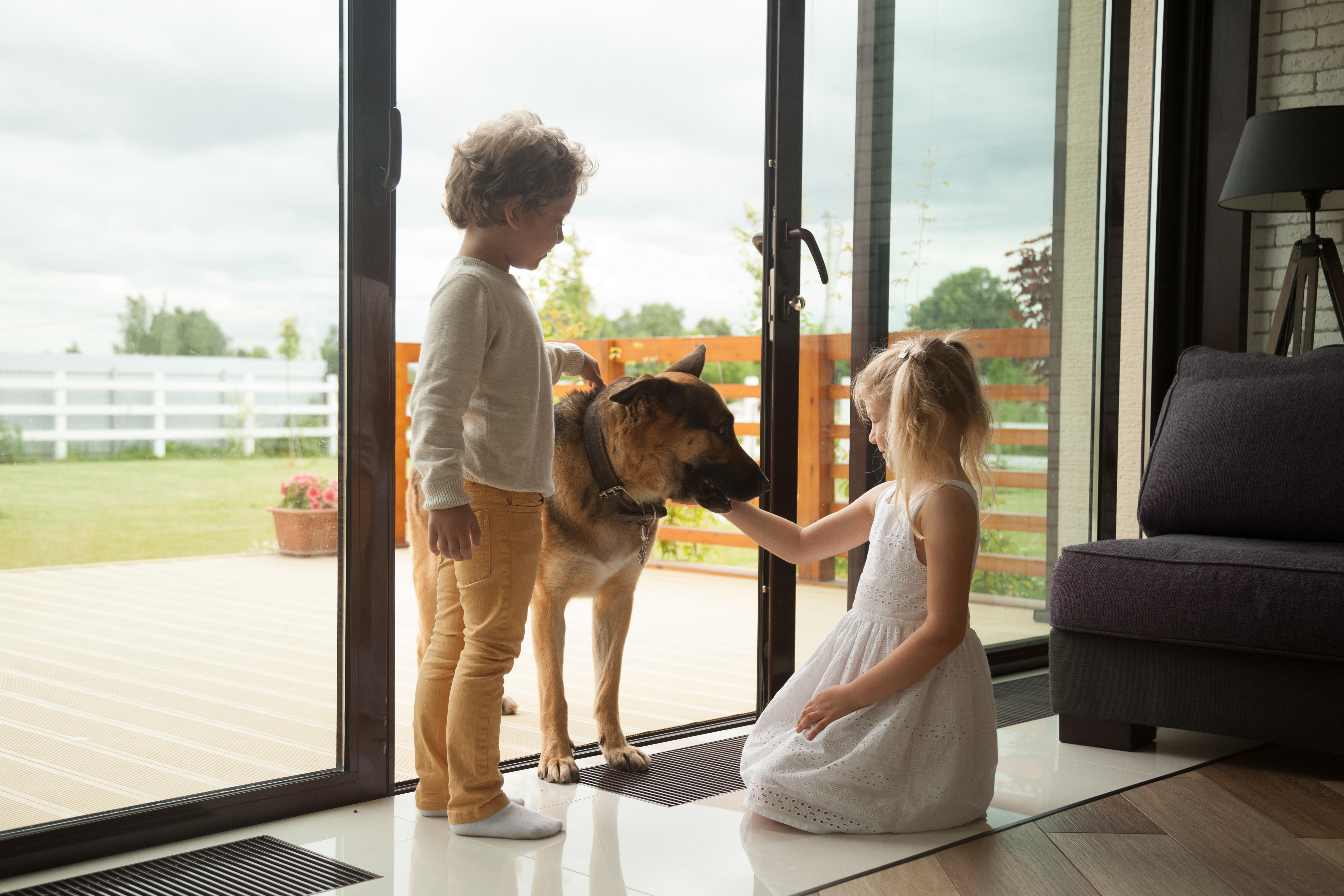How To Keep Pets and Small Kids Safe During A Remodel